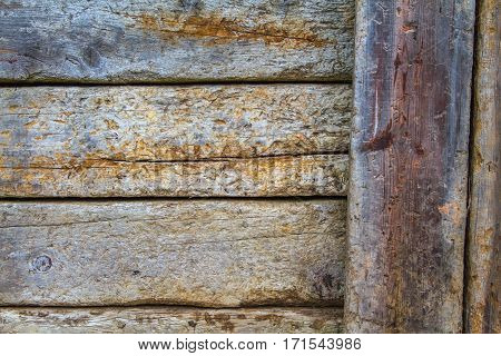 Part of a fence with vertical planks on the right. Wood details are clearly visible. Nice degraded colors.