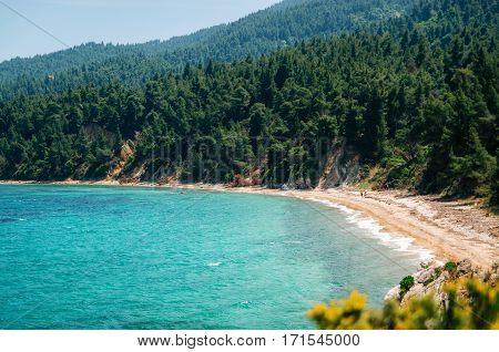 Hidden wild beach with sand against the green forest of the pine trees in Vourvourou Sithonia Greece. View from above
