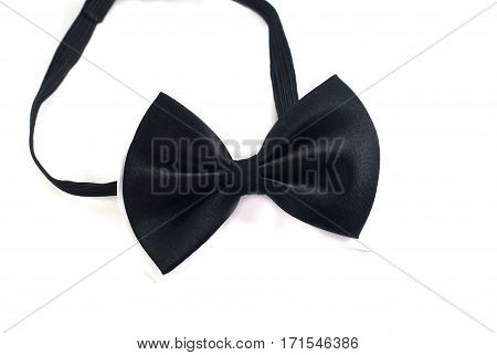 Bow Tie On White Background