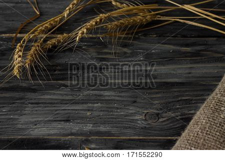 Background with wheat spikelets and sackcloth in a rustic style