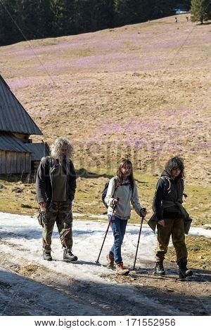 CHOCHOLOWSKA VALLEY, POLAND - MARCH 31, 2016: Tourists walking on hiking path in Chocholowska valley in spring season Tatra Mountains Poland