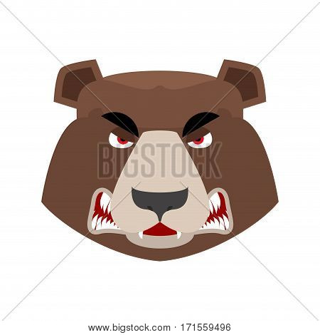 Bear Angry Emoji. Grizzly Aggressive Emotion. Face Wild Animal Isolated