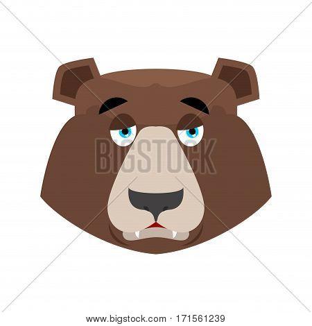 Bear Sad Emoji. Grizzly Melancholy Emotion. Face Wild Animal Isolated