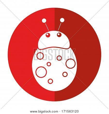 ladybug fly antenna animal shadow vector illustration eps 10