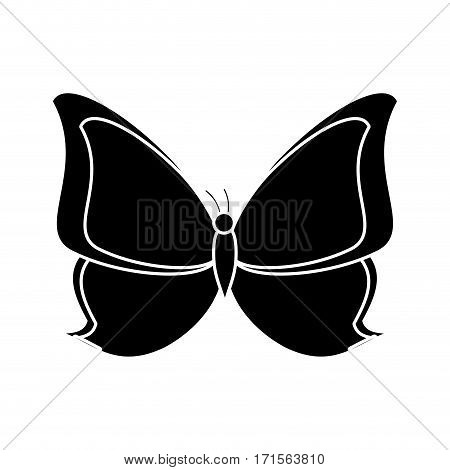 butterfly animal insect fly pictogram vector illustration eps 10