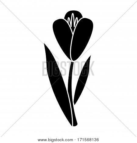 flower flora fragant garden pictogram vector illustration eps 10