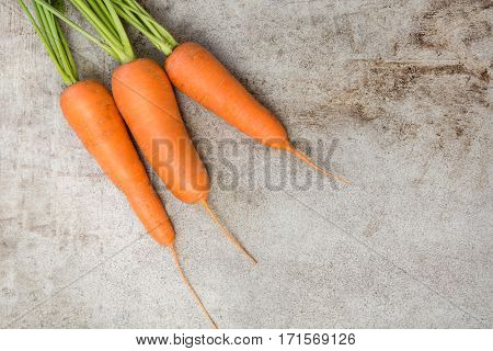 Fresh organic carrots with green tops on rustic table, closeup. Copy space. Top view.
