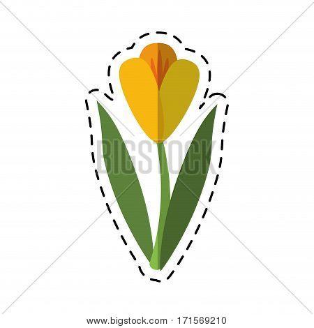 cartoon flower flora fragant garden vector illustration eps 10