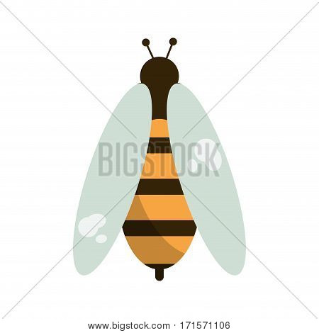 bee honey insect insect icon vector illustration eps 10