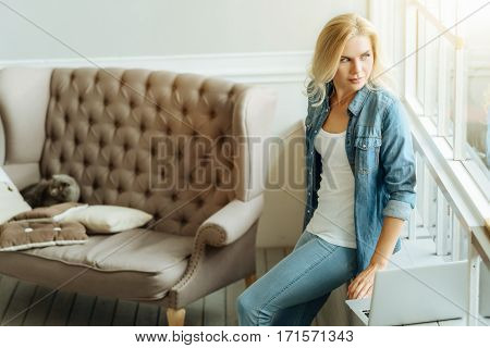 Work and rest. Overjoyed young concentrated woman sitting on sofa and using laptop while spending time at home.