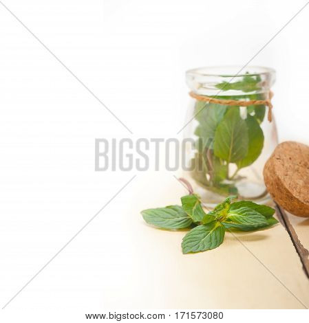 Fresh Mint Leaves On A Glass Jar