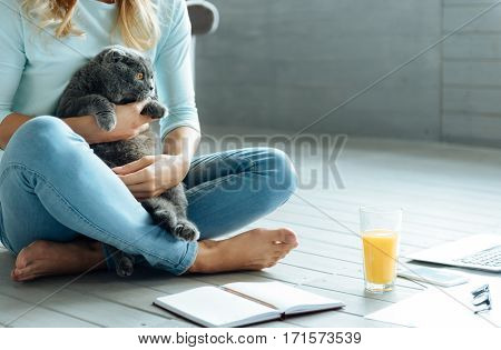 My lovely pet. Close up of young delighted pretty woman holding a cat and drinking juice while sitting in a living room with a book.