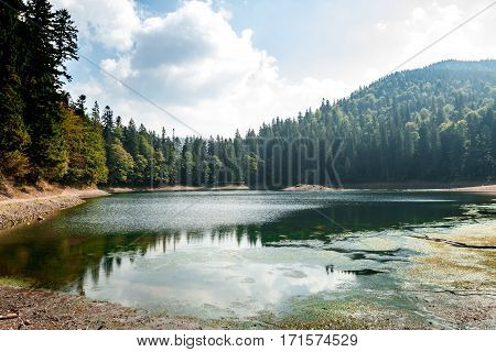 Breathtaking view of lake high in Carpathian mountains. Copy space.