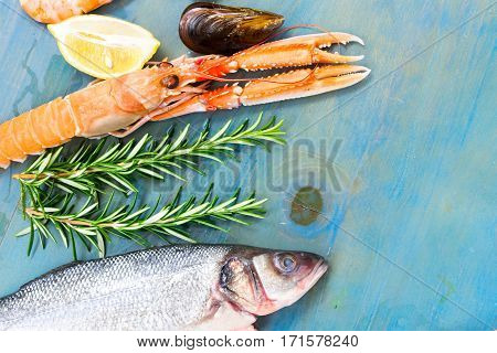 Fresh seafood and seabass fish flat lay scene on blue background close up
