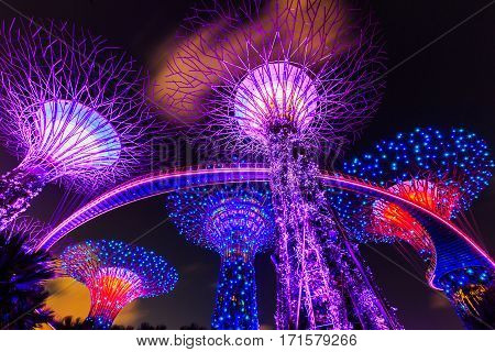 Singapore City Singapore - January 8 2016 Supertree Grove in the Gradens by the Bay