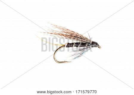 Cut Out Of A Trout Fly