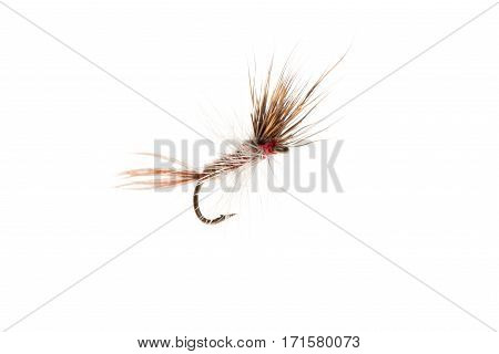 Fishing lure or fish hook cut out