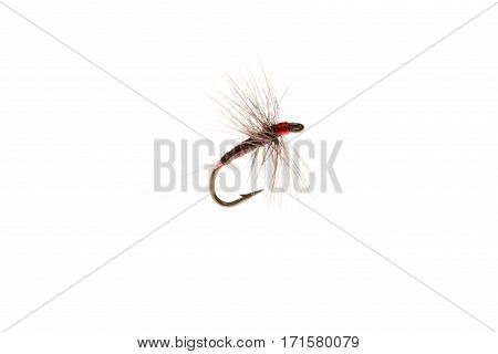 Artificial Trout Lure Or Fishing Hook Cut Out