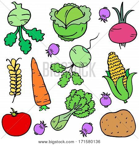 Illustration vector of vegetable doodle set collection stock