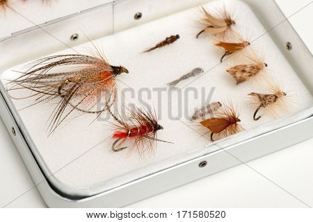 Assortment Of Trout Flies Or Fishhooks In Aluminum Case