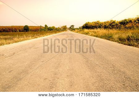 The Long Perspective Road in the countryside