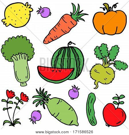 Vector illustration of vegetable set collection stock