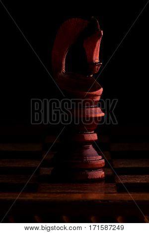 Chess. Black Knight (Horse) on black background. Сhess figure.