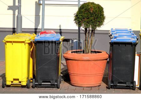 Blue and yellow dustbins and big plant in ceramic pot. Waste separation. Recycling in Germany.