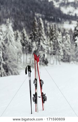 Red Skis And Black Ski Poles Put In The Snow On Hill