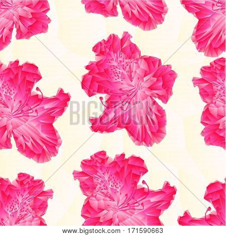 Seamless texture Flower pink rhododendron polygons Mountain spring shrub vector illustration