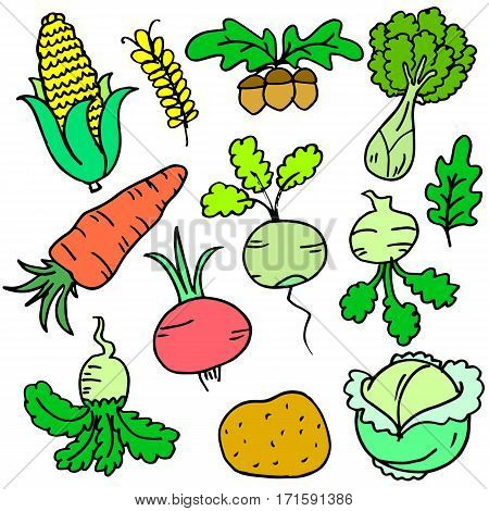 Collection stock of vegetable various doodle set vector art