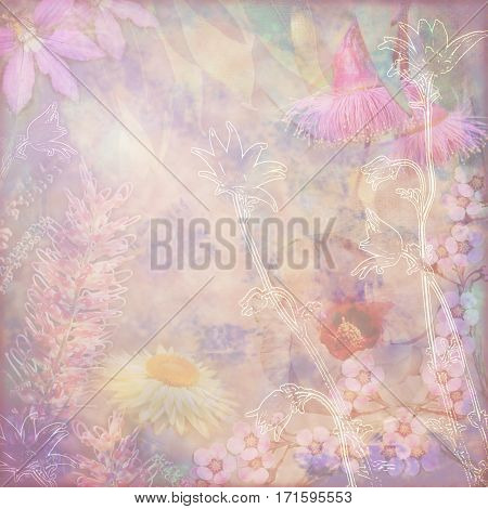 Faded vintage floral background with Australian flora including grevillea, flannel flowers, paper daisies, Sturts Desert Rose and gumtree blossoms. Photo montage on textured background. Copy space for text.