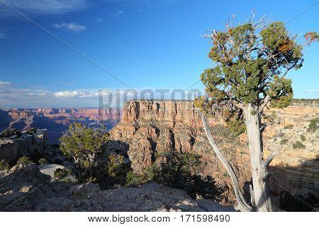 Moran Point, Grand Canyon