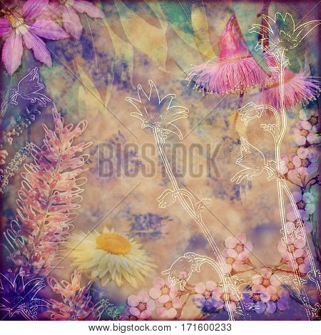 Vintage floral background with Australian flora including grevillea, flannel flowers, paper daisies, and gumtree blossoms. Photo montage on textured background. Copy space for text.