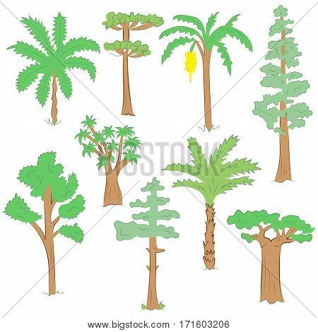 Hand Drawn Set of Green Trees. Doodle Drawings of Palms Sequoia Aloe Acacia Ceiba in Flat Style.Vector Illustration.