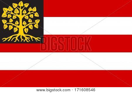 Flag of Hertogenbosch is a city and municipality in the southern Netherlands. It is the capital of the province of North Brabant
