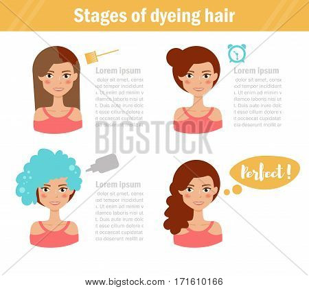Stages of dyeing hair. Vector art on a white background. Cartoon. Isolated. Flat. Illustration for websites, brochures, magazines