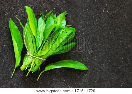 ramson bear garlic bunch tied with rope on old dark black background