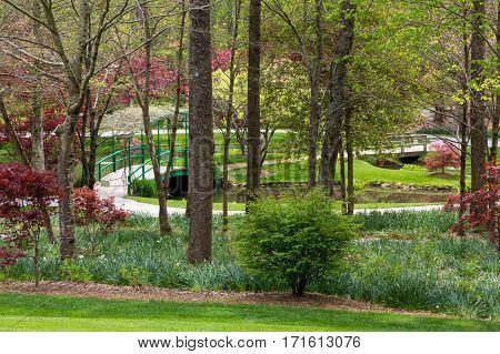 A Small Bridge in Garden with Path