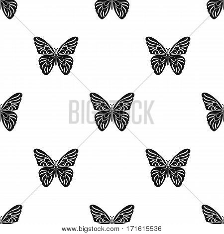 Butterfly icon in black design isolated on white background. Insects pattern stock vector illustration.