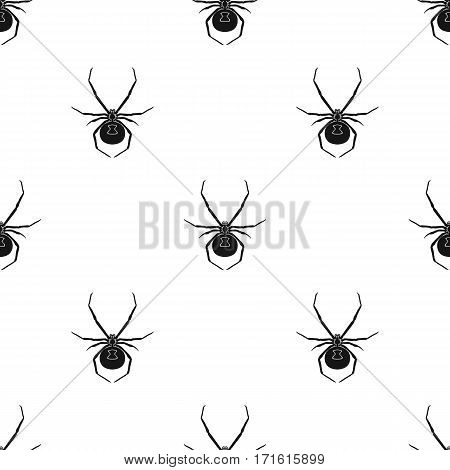 Black widow spider icon in black design isolated on white background. Insects pattern stock vector illustration.