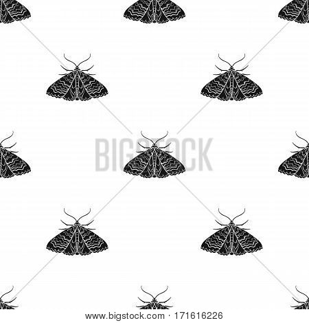 Moth icon in black design isolated on white background. Insects pattern stock vector illustration.