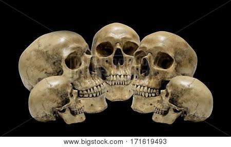 Awesome, Pile Of Skull Isolated On Black Background, Still Life Style