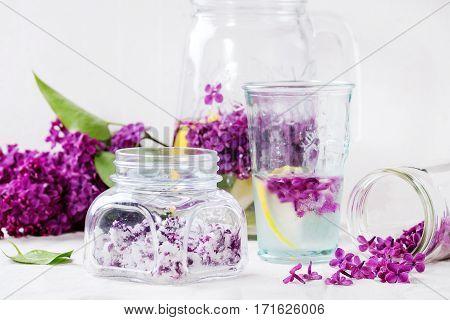Lilac Flowers In Sugar