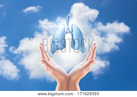 Hands Holding Human Lungs On The Background Of The Sky.