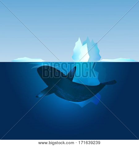 Iceberg in the sea and whale swimming in front of it. North landscape. Vector illustration.