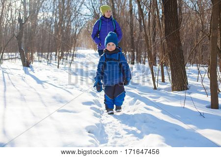 The Boy Walks With His Mother Through The Wood In The Winter.