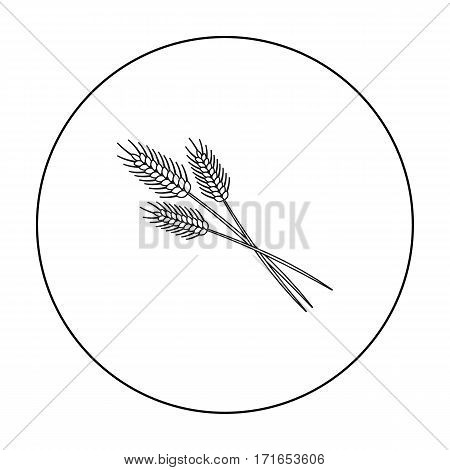 Bundle of wheat icon in outline style isolated on white background. Canadian Thanksgiving Day symbol vector illustration.