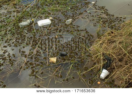 Trash polluting the water of a lake