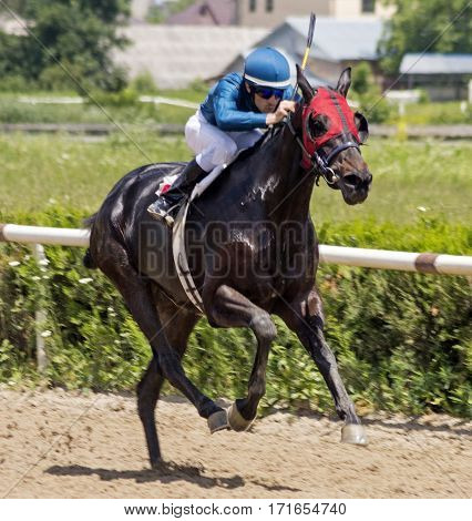 Horse racing for the traditional prize Evtushenko in Nalchik,Caucasus,Russia.